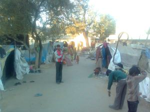 Dalit families, forced to leave their village, living in makeshift tents in front of Deesa mamlatdar's office