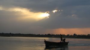 A fisherman in Narmada river