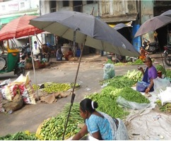 Female vegetable vendors trying to protect themselves from the radiant heat on the streets of Danapith in Ahmedabad May 2013