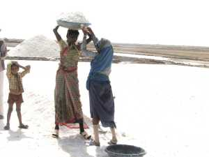 Salt pan workers in the Little Rann of Kutch