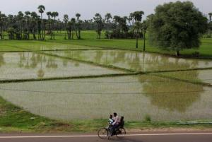 Fertile agricultural land to be acquired for the new Andhra Pradesh capital