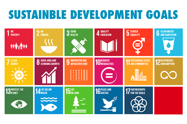 millenium developement goals Ten years after the millennium development goals (mdgs) were established, it is  clear that the objectives of human well being and dignity for all, enshrined in.