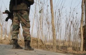 army naga
