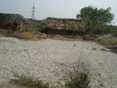 Fly ash dumped in the open near people's houses, Odisha
