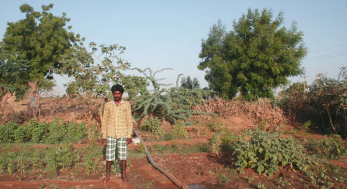 Velejibhai in his farm