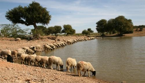 water-jaiselmar-lead-sambhaav-water-security
