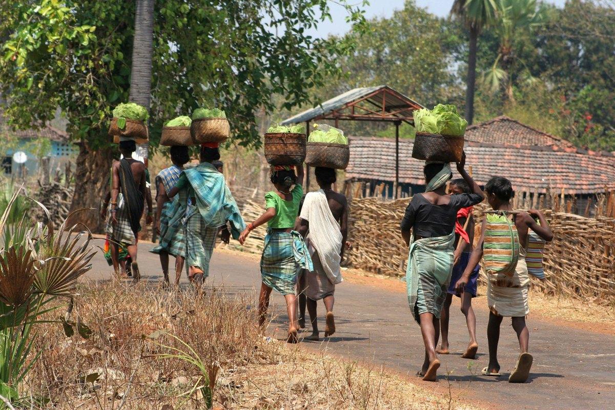 Arrest of rights team in Telangana, Chhattisgarh violative
