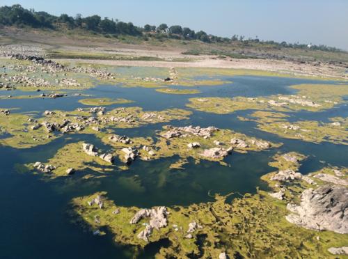 narmada-downstream