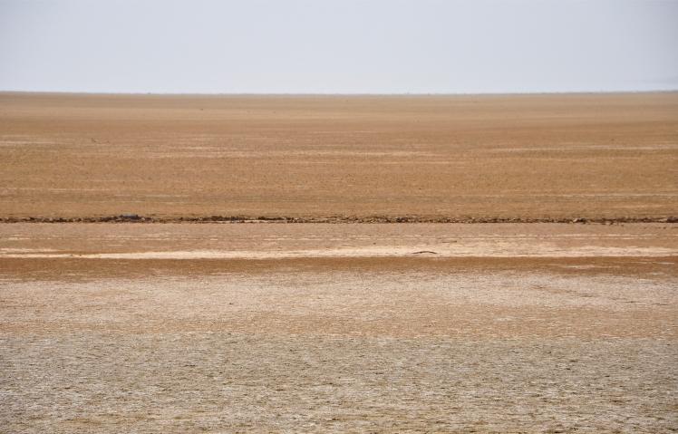01-white-desert-vatsal-vekaria