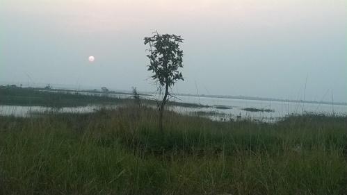 Photo: Himanshu Thakkar, SANDRP