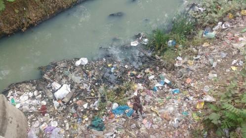 Vishwamitri-river-Gujarat