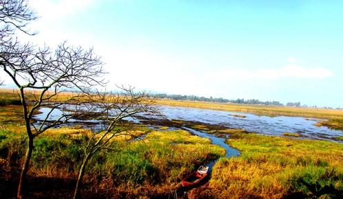 02-02-2017_Wetlands685-3
