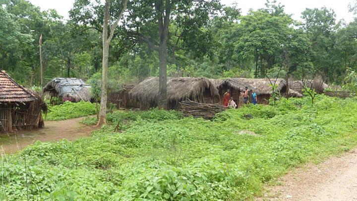 tribals (1)