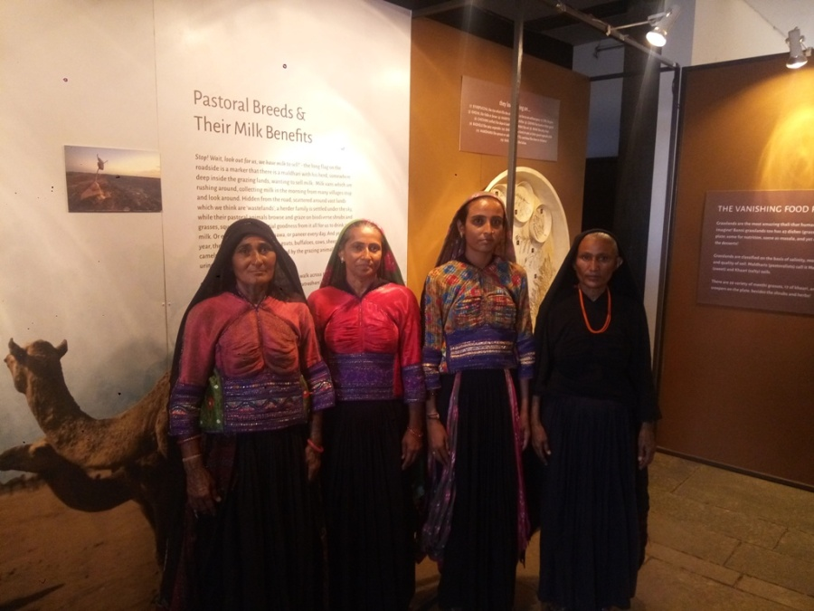 Maaldhari ladies posing at Living Lilghtly - journeys wih pastoralists exhibition