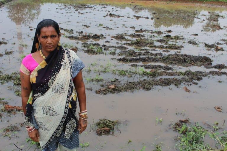 Bindabai-Patel-768x512