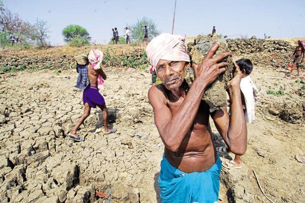 dalit adivasi land