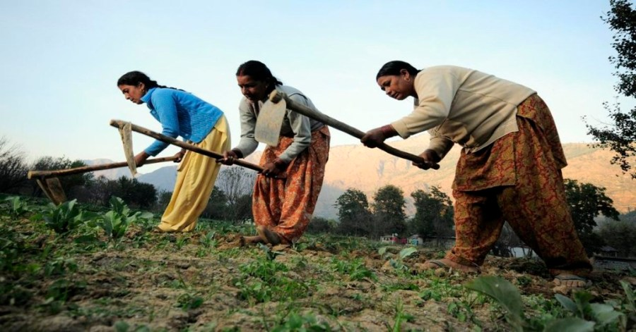 Indian-Women-Farmers-Feature-Image